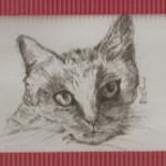 Wish for Your Family 'Pet Portraiture' Sketched or Painted?